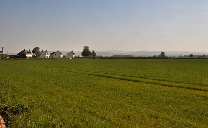 Agricultural landscape near Glamis